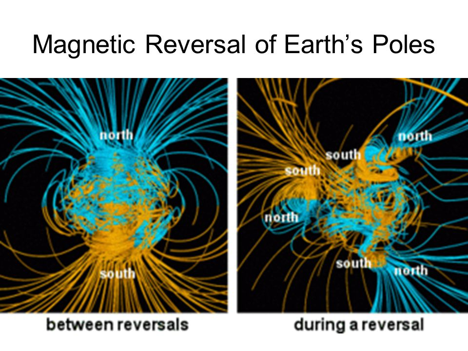 Magnetic Reversal of Earth's Poles