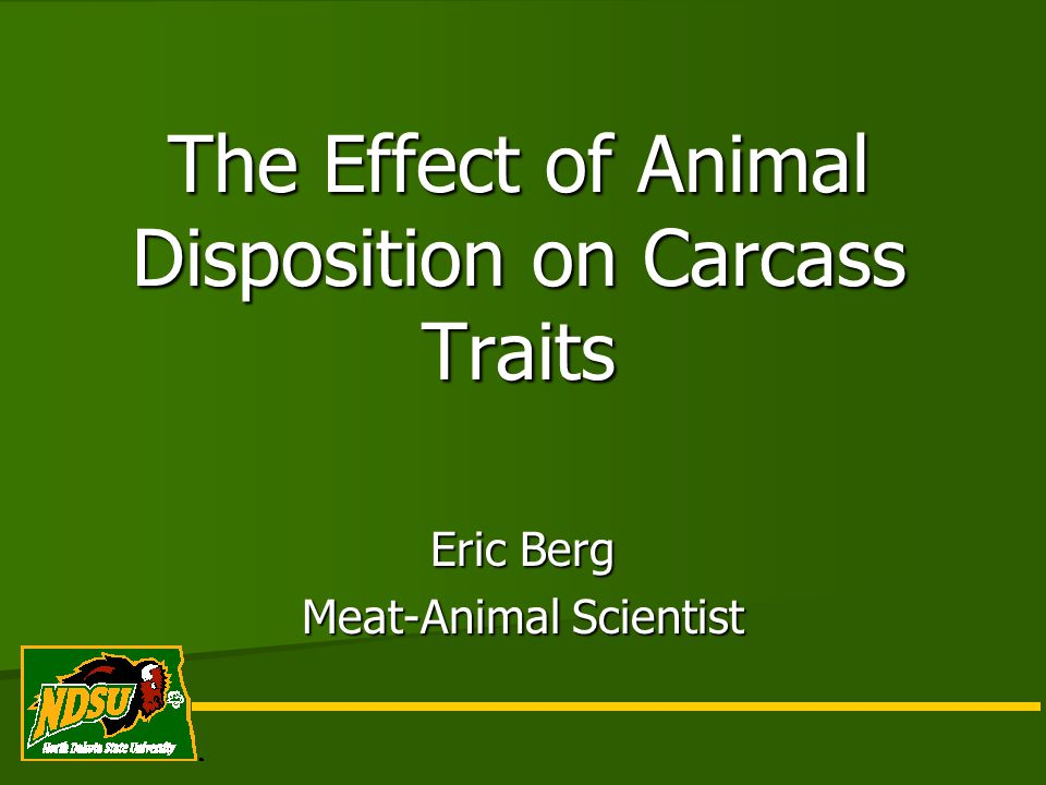 The Effect of Animal Disposition on Carcass Traits Eric Berg Meat-Animal Scientist