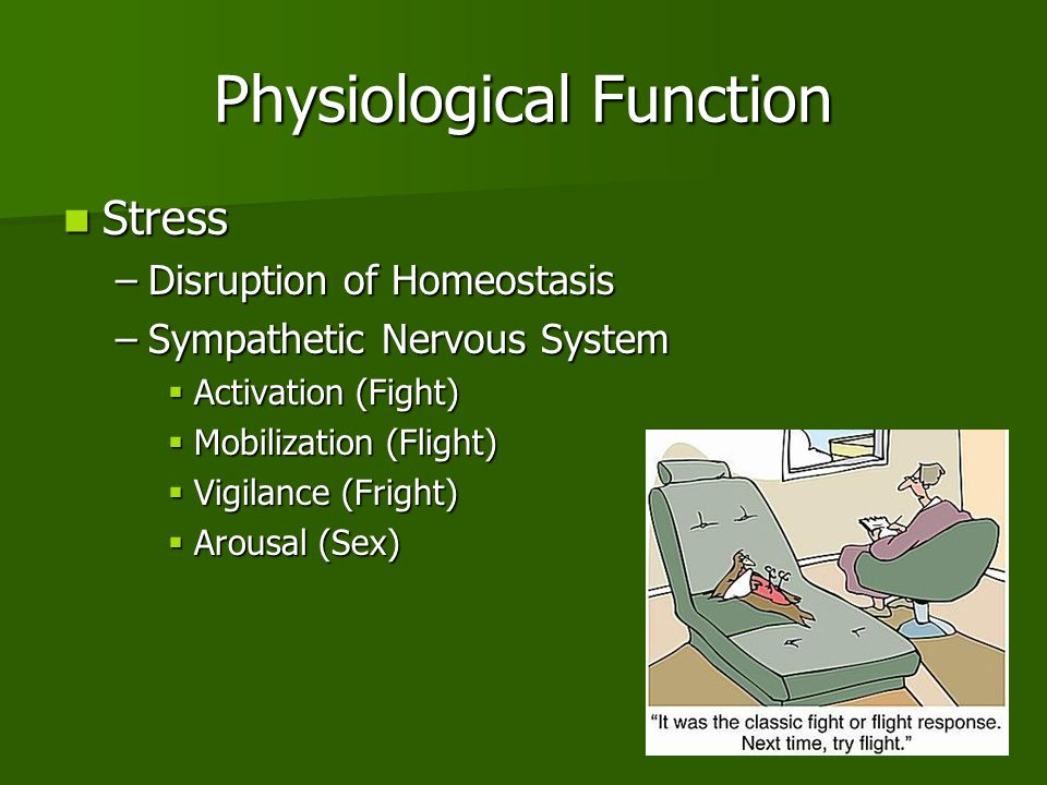 Physiological Function Stress Stress –Disruption of Homeostasis –Sympathetic Nervous System  Activation (Fight)  Mobilization (Flight)  Vigilance (