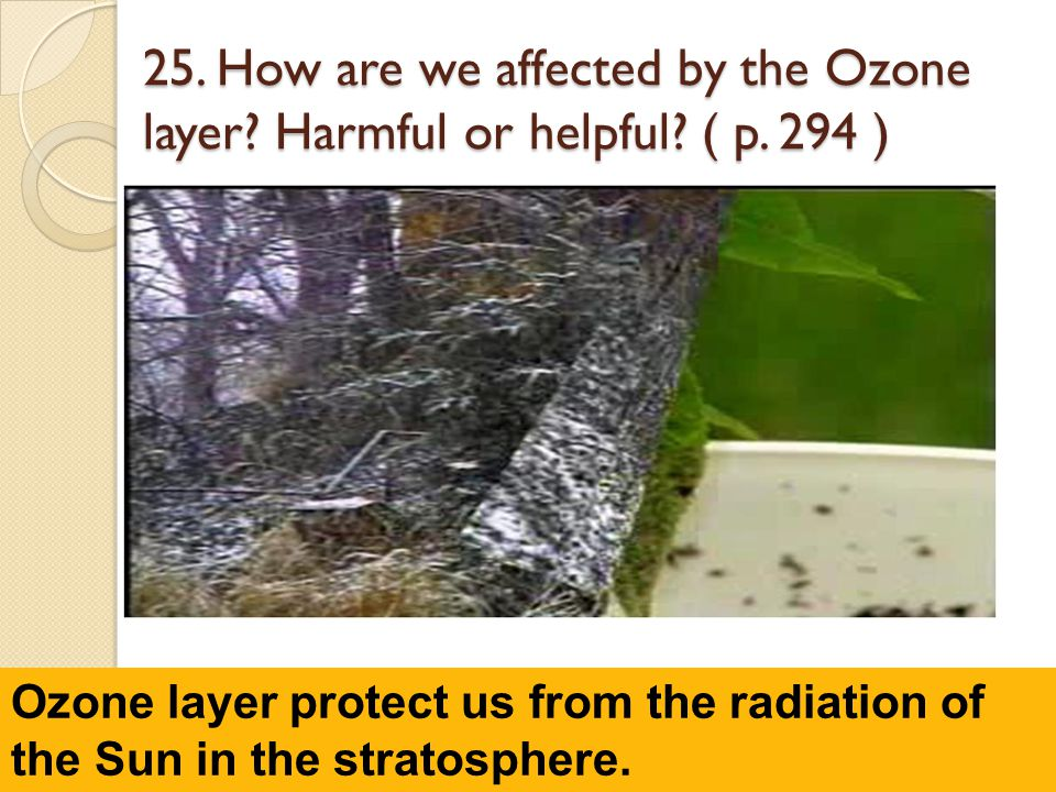 25. How are we affected by the Ozone layer? Harmful or helpful? ( p. 294 ) 3.56 Ozone layer protect us from the radiation of the Sun in the stratosphe