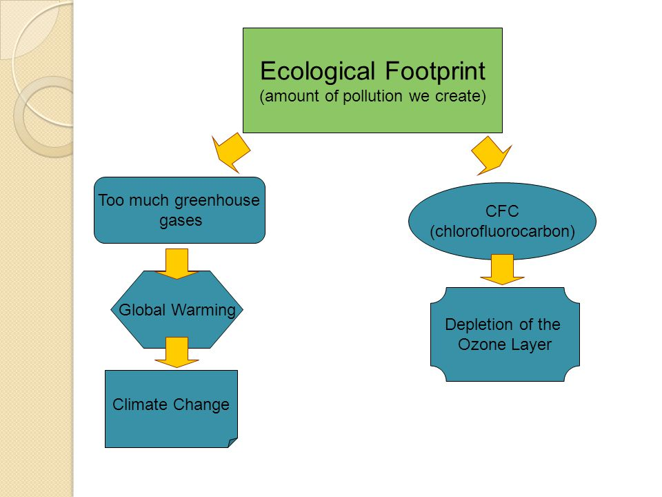 Ecological Footprint (amount of pollution we create) Too much greenhouse gases CFC (chlorofluorocarbon) Global Warming Climate Change Depletion of the