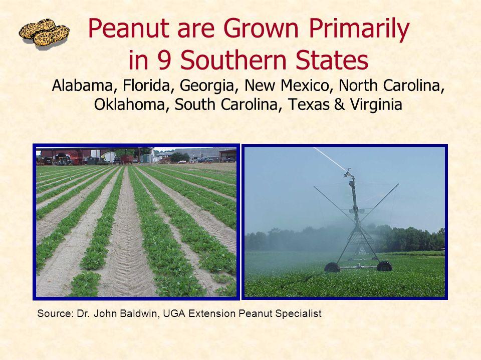 Peanut are Grown Primarily in 9 Southern States Alabama, Florida, Georgia, New Mexico, North Carolina, Oklahoma, South Carolina, Texas & Virginia Sour
