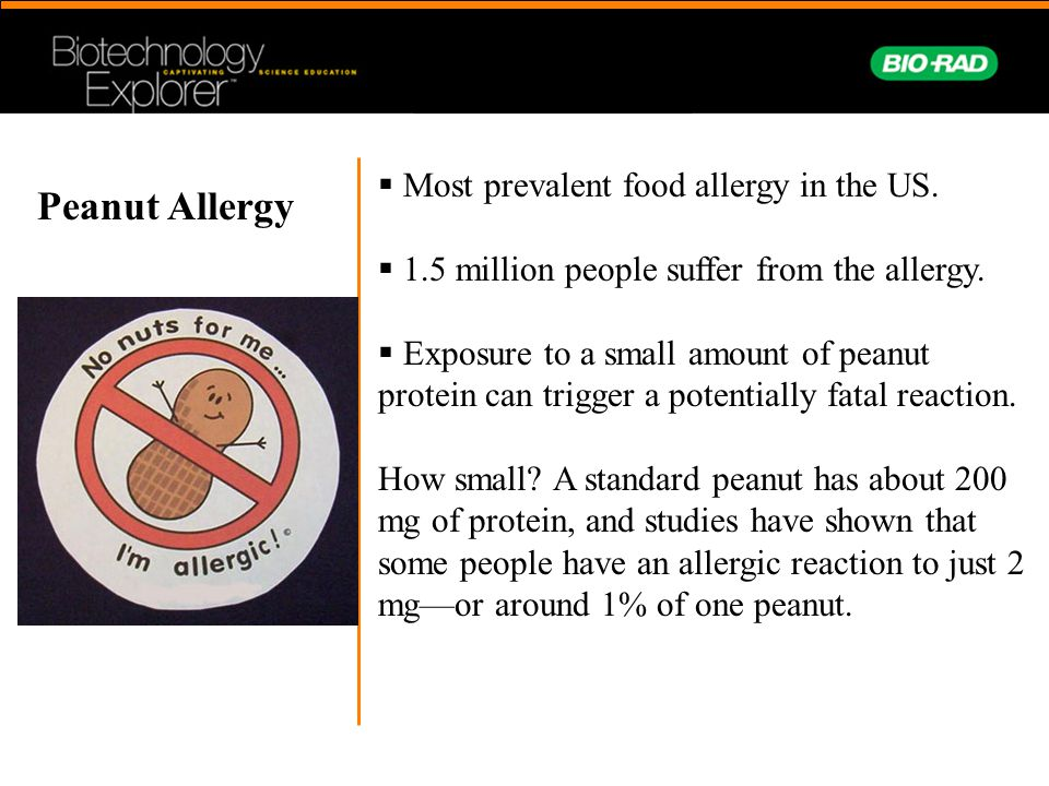  Most prevalent food allergy in the US.  1.5 million people suffer from the allergy.  Exposure to a small amount of peanut protein can trigger a po