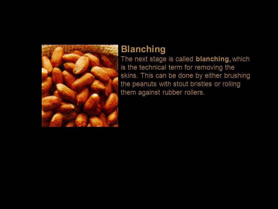 Blanching The next stage is called blanching, which is the technical term for removing the skins.