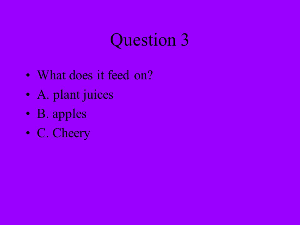 Question 3 What does it feed on? A. plant juices B. apples C. Cheery