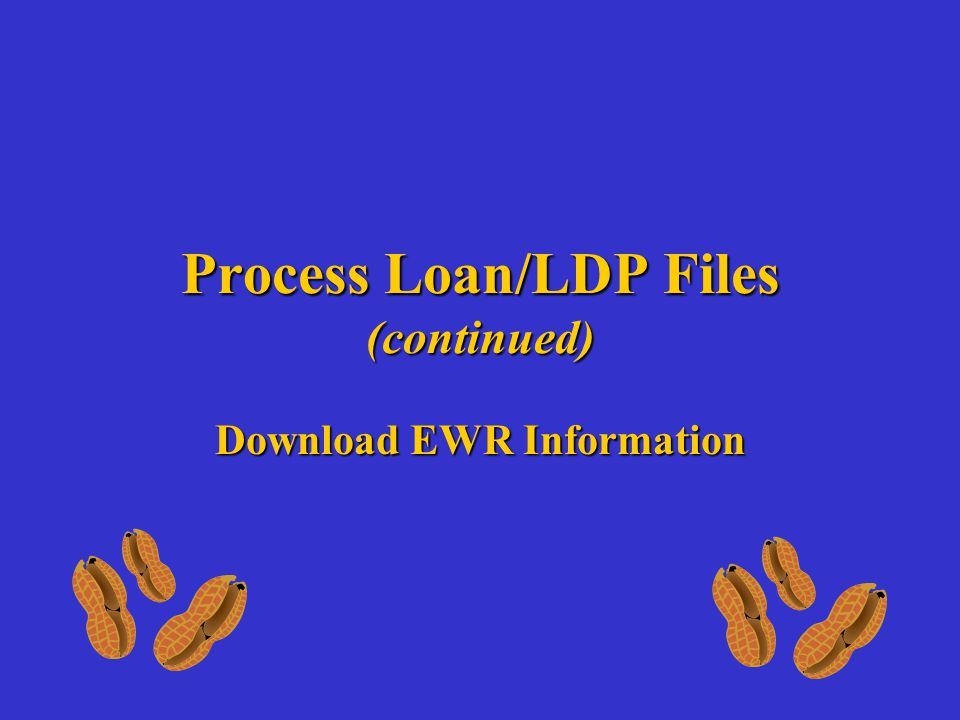 Process Loan/LDP Files (continued) Download EWR Information