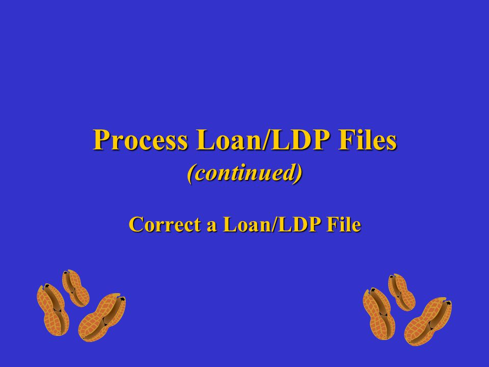Process Loan/LDP Files (continued) Correct a Loan/LDP File