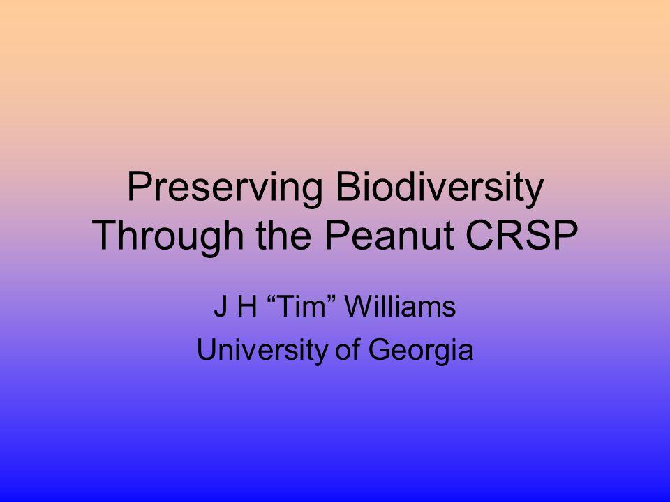 Preserving Biodiversity Through the Peanut CRSP J H Tim Williams University of Georgia