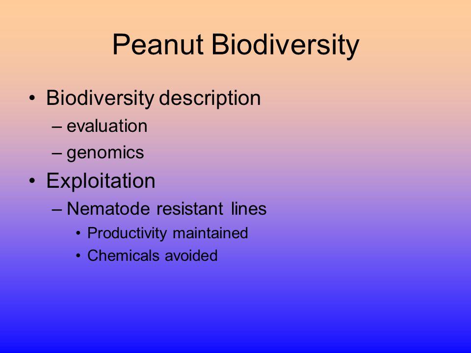 Peanut Biodiversity Biodiversity description –evaluation –genomics Exploitation –Nematode resistant lines Productivity maintained Chemicals avoided