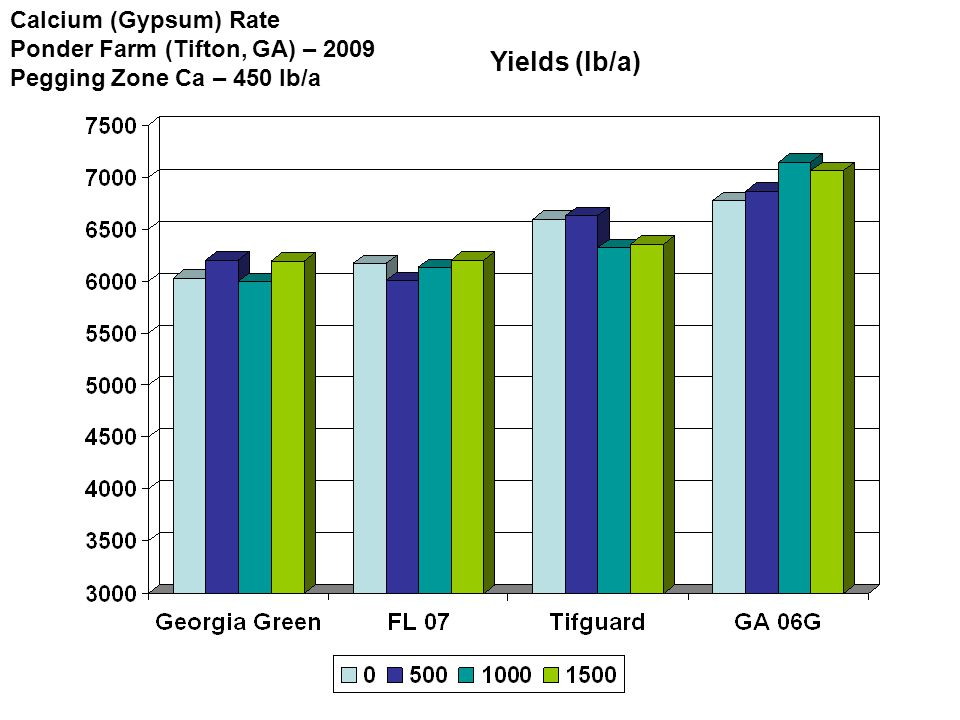 Yields (lb/a) Calcium (Gypsum) Rate Ponder Farm (Tifton, GA) – 2009 Pegging Zone Ca – 450 lb/a
