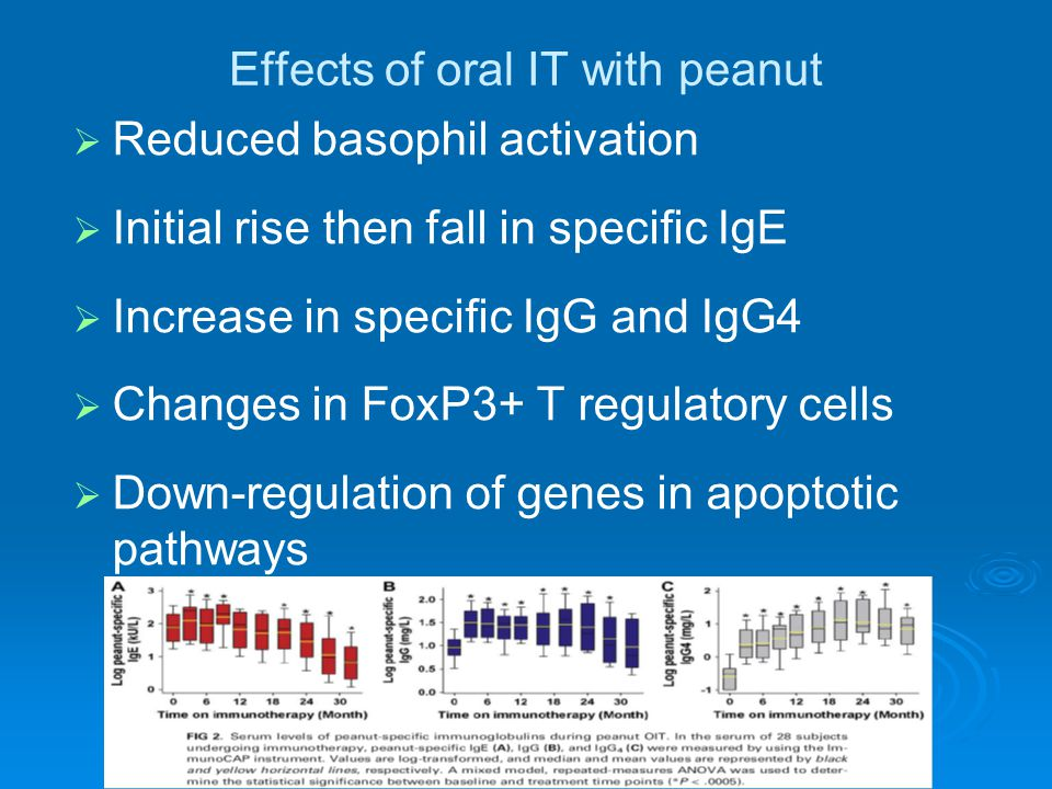Effects of oral IT with peanut   Reduced basophil activation   Initial rise then fall in specific IgE   Increase in specific IgG and IgG4   Changes in FoxP3+ T regulatory cells   Down-regulation of genes in apoptotic pathways