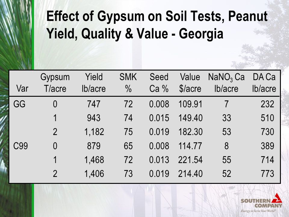 Effect of Gypsum on Soil Tests, Peanut Yield, Quality & Value - Georgia Gypsum T/acre 012012012012 Yield lb/acre 747 943 1,182 879 1,468 1,406 SMK % 72 74 75 65 72 73 Seed Ca % 0.008 0.015 0.019 0.008 0.013 0.019 Value $/acre 109.91 149.40 182.30 114.77 221.54 214.40 NaNO 3 Ca lb/acre 7 33 53 8 55 52 DA Ca lb/acre 232 510 730 389 714 773 Var GG C99