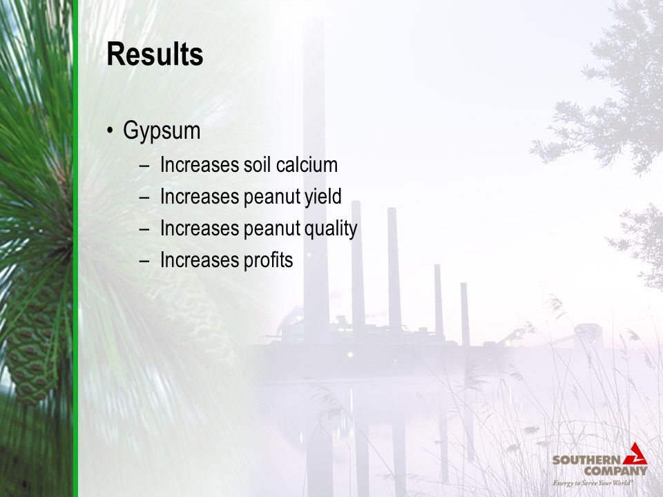 Results Gypsum –Increases soil calcium –Increases peanut yield –Increases peanut quality –Increases profits