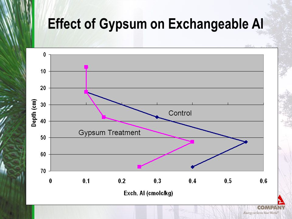 Control Gypsum Treatment Effect of Gypsum on Exchangeable Al