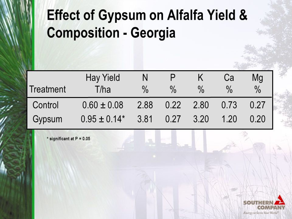 Effect of Gypsum on Alfalfa Yield & Composition - Georgia Hay Yield T/ha 0.60 ± 0.08 0.95 ± 0.14* N%N% 2.88 3.81 P%P% 0.22 0.27 K%K% 2.80 3.20 Ca % 0.73 1.20 Mg % 0.27 0.20 Treatment Control Gypsum * significant at P = 0.05