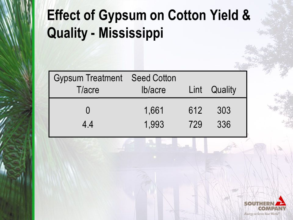 Effect of Gypsum on Cotton Yield & Quality - Mississippi Seed Cotton lb/acre 1,661 1,993 Lint 612 729 Quality 303 336 Gypsum Treatment T/acre 0 4.4