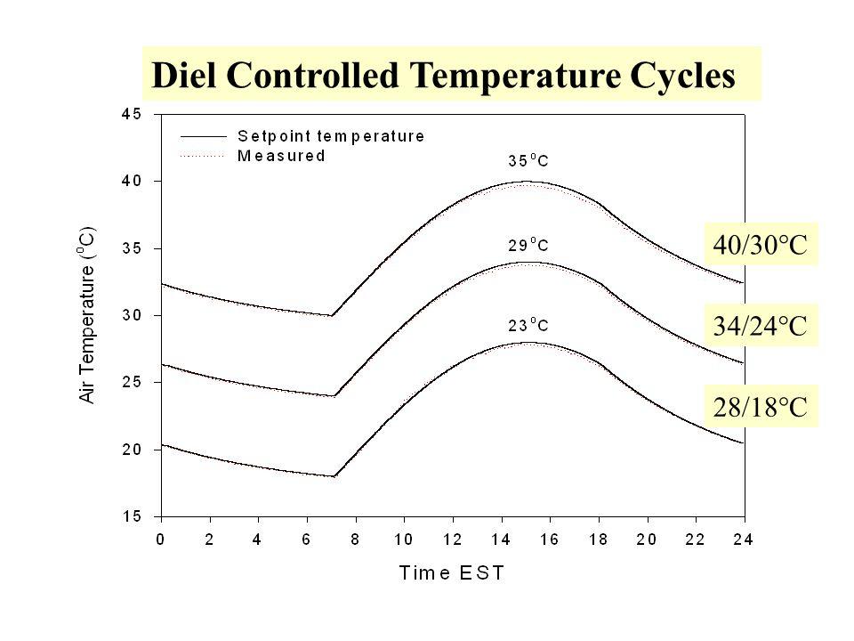 Diel Controlled Temperature Cycles 40/30°C 34/24°C 28/18°C