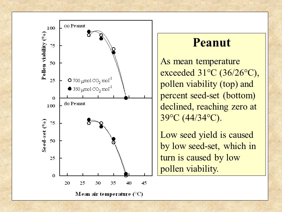Peanut As mean temperature exceeded 31°C (36/26°C), pollen viability (top) and percent seed-set (bottom) declined, reaching zero at 39°C (44/34°C).