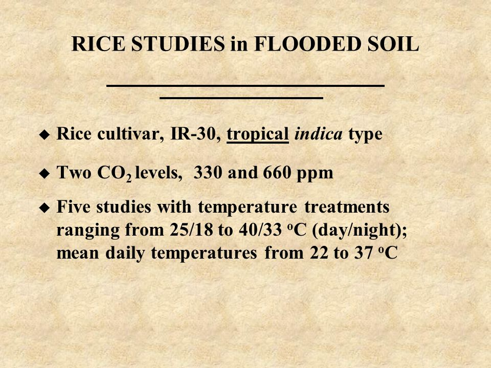 RICE STUDIES in FLOODED SOIL u Rice cultivar, IR-30, tropical indica type u Two CO 2 levels, 330 and 660 ppm u Five studies with temperature treatments ranging from 25/18 to 40/33 o C (day/night); mean daily temperatures from 22 to 37 o C