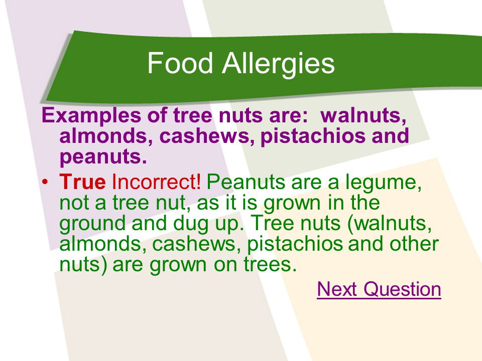 Food Allergies Examples of tree nuts are: walnuts, almonds, cashews, pistachios and peanuts. True Incorrect! Peanuts are a legume, not a tree nut, as