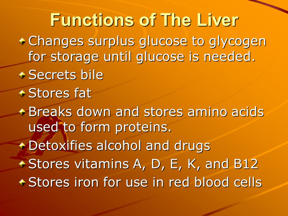 Functions of The Liver Changes surplus glucose to glycogen for storage until glucose is needed.