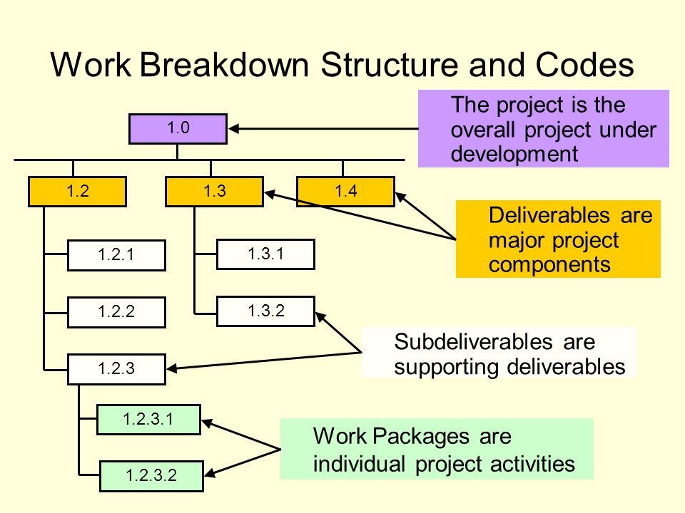 Work Breakdown Structure and Codes Work Packages are individual project activities 1.0 1.21.31.4 1.2.1 1.2.2 1.2.3 1.3.1 1.3.2 1.2.3.1 1.2.3.2 Deliverables are major project components Subdeliverables are supporting deliverables The project is the overall project under development