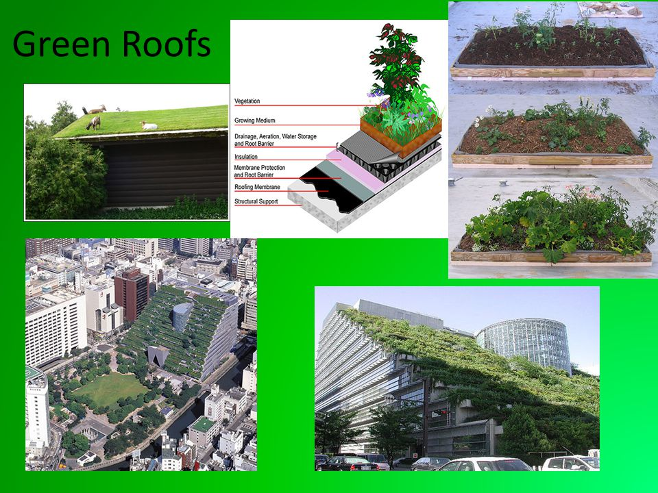 What is a Green Roof .