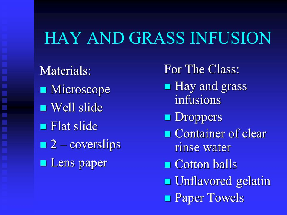 HAY AND GRASS INFUSION Materials: Microscope Microscope Well slide Well slide Flat slide Flat slide 2 – coverslips 2 – coverslips Lens paper Lens paper For The Class: Hay and grass infusions Droppers Container of clear rinse water Cotton balls Unflavored gelatin Paper Towels