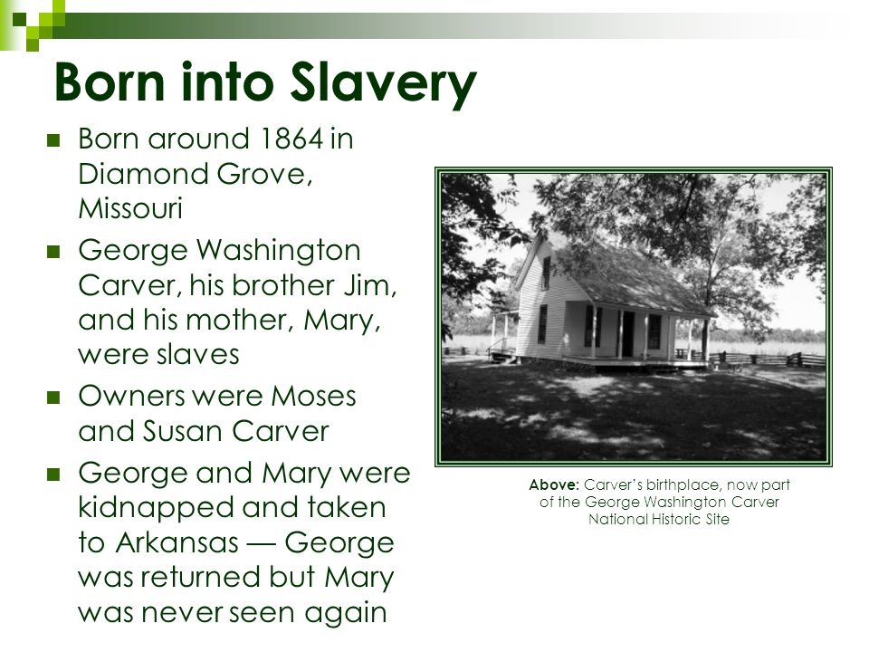 Born into Slavery Born around 1864 in Diamond Grove, Missouri George Washington Carver, his brother Jim, and his mother, Mary, were slaves Owners were Moses and Susan Carver George and Mary were kidnapped and taken to Arkansas — George was returned but Mary was never seen again Above: Carver's birthplace, now part of the George Washington Carver National Historic Site