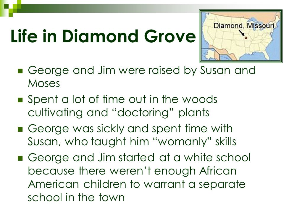 Life in Diamond Grove George and Jim were raised by Susan and Moses Spent a lot of time out in the woods cultivating and doctoring plants George was sickly and spent time with Susan, who taught him womanly skills George and Jim started at a white school because there weren't enough African American children to warrant a separate school in the town