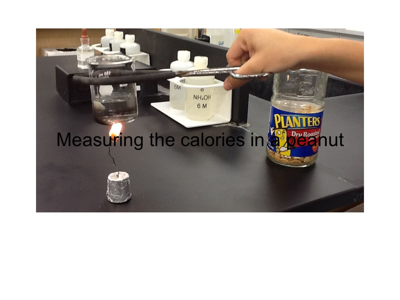 Measuring the calories in a peanut