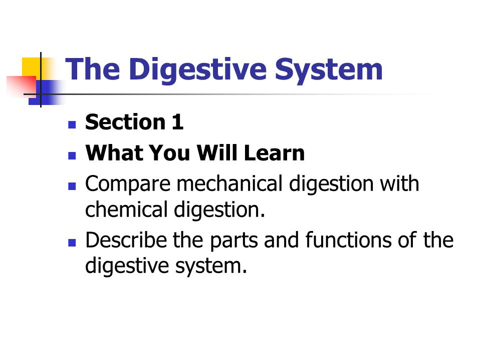 Section 1 What You Will Learn Compare mechanical digestion with chemical digestion.