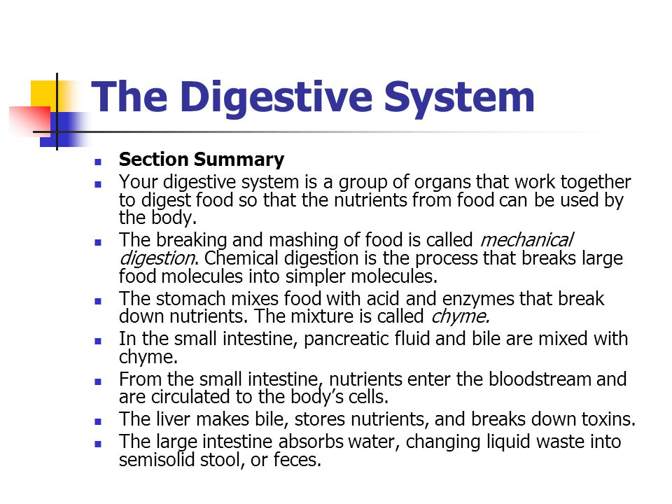 The Digestive System Section Summary Your digestive system is a group of organs that work together to digest food so that the nutrients from food can be used by the body.