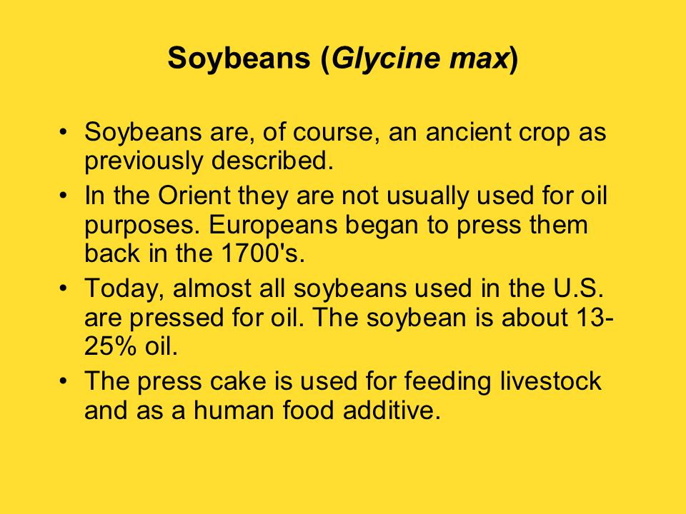 Soybeans (Glycine max) Soybeans are, of course, an ancient crop as previously described.