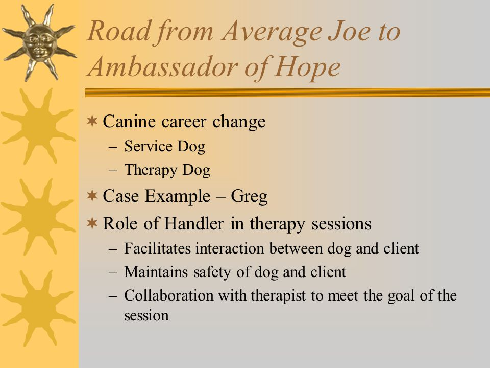 Road from Average Joe to Ambassador of Hope  Canine career change –Service Dog –Therapy Dog  Case Example – Greg  Role of Handler in therapy sessions –Facilitates interaction between dog and client –Maintains safety of dog and client –Collaboration with therapist to meet the goal of the session