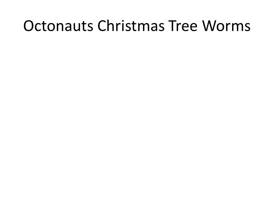 Octonauts Christmas Tree Worms