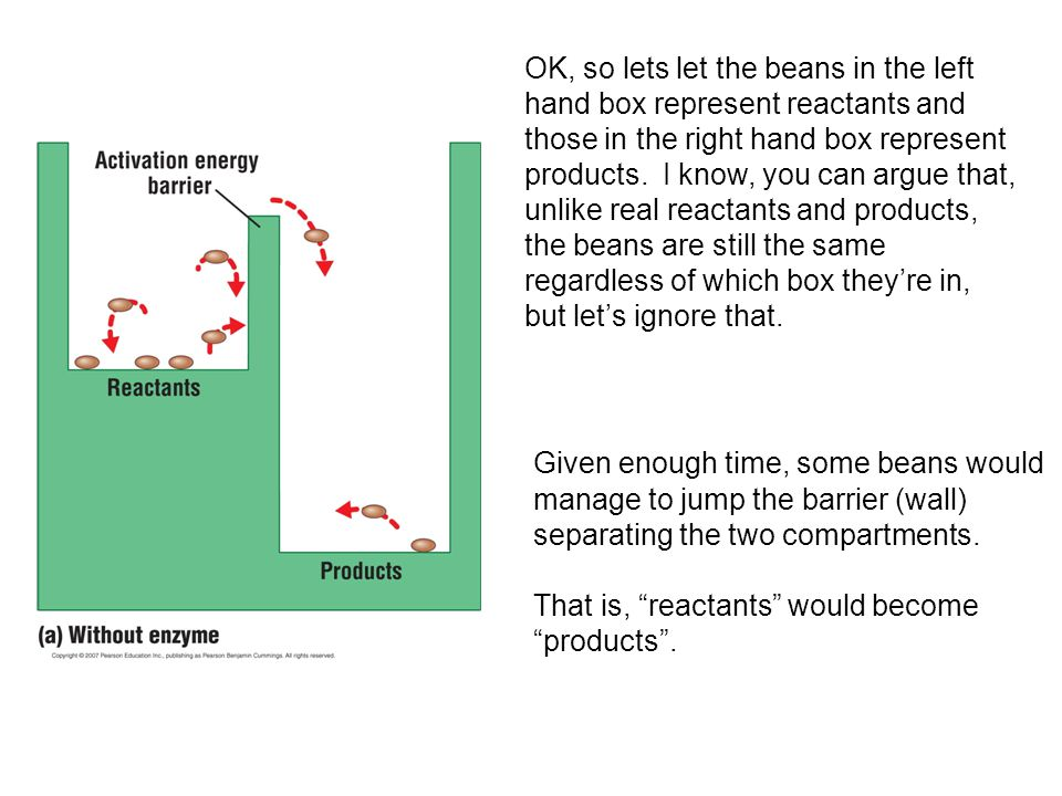 OK, so lets let the beans in the left hand box represent reactants and those in the right hand box represent products.