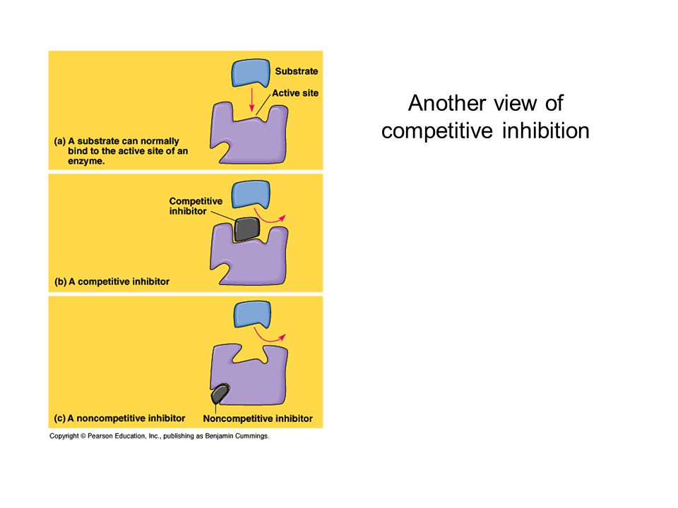 Another view of competitive inhibition