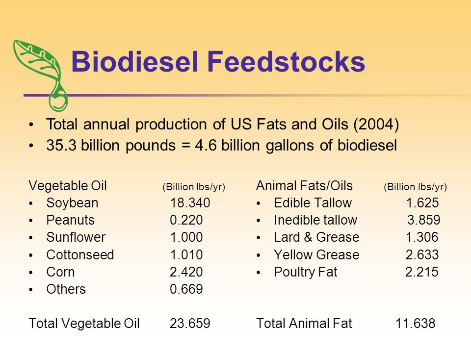 Biodiesel Feedstocks Vegetable Oil (Billion lbs/yr) Soybean18.340 Peanuts0.220 Sunflower1.000 Cottonseed1.010 Corn2.420 Others0.669 Total Vegetable Oil23.659 Animal Fats/Oils (Billion lbs/yr) Edible Tallow 1.625 Inedible tallow 3.859 Lard & Grease 1.306 Yellow Grease 2.633 Poultry Fat 2.215 Total Animal Fat 11.638 Total annual production of US Fats and Oils (2004) 35.3 billion pounds = 4.6 billion gallons of biodiesel