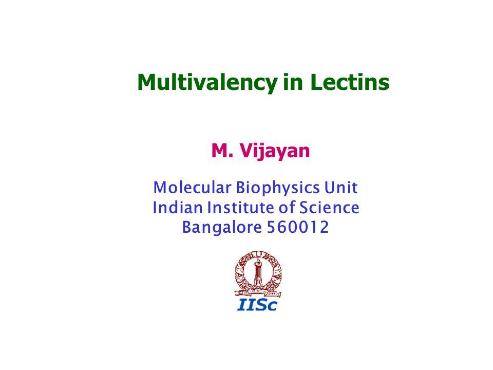 Multivalency in Lectins M. Vijayan Molecular Biophysics Unit Indian Institute of Science Bangalore 560012