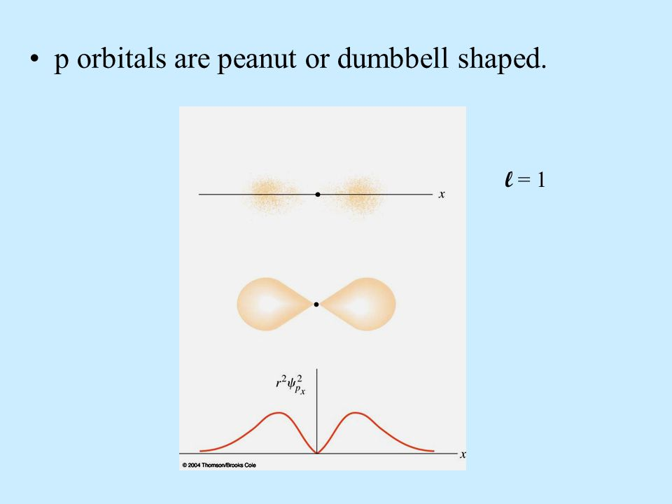 p orbitals are peanut or dumbbell shaped. l = 1