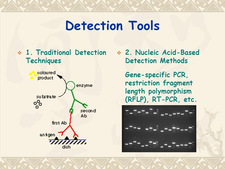 Detection Tools  1. Traditional Detection Techniques  2.