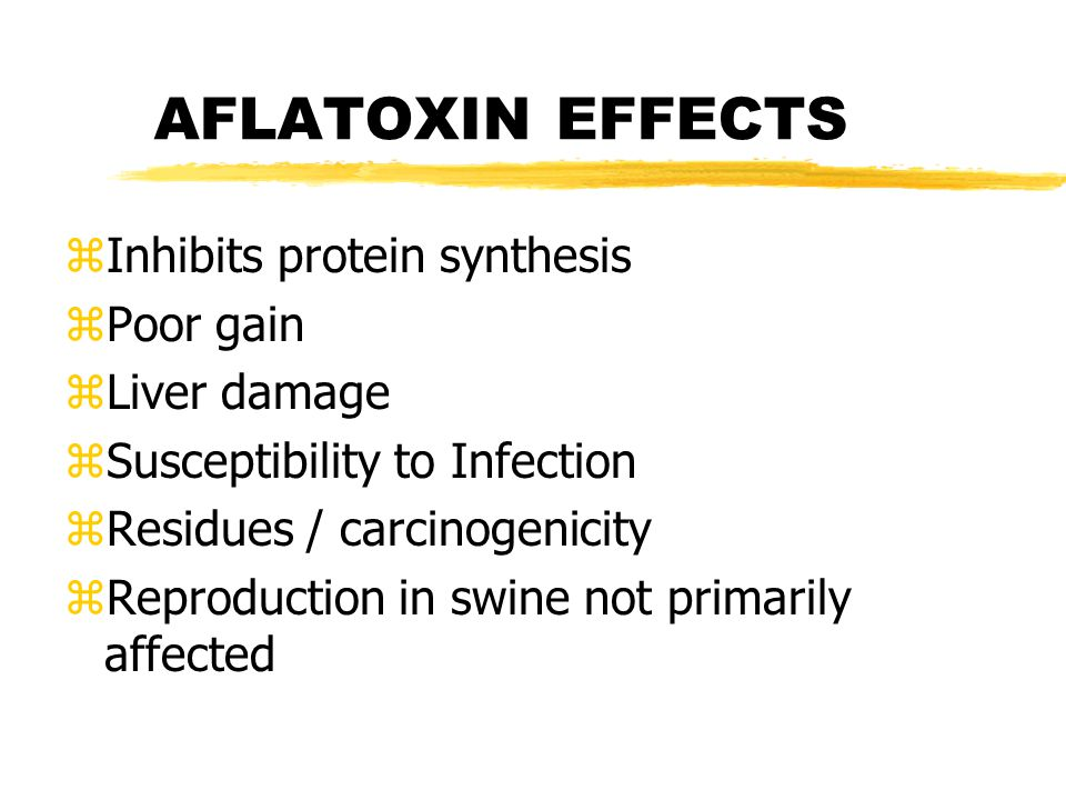 Aflatoxin (cont) zOccurs in corn and other grains also.