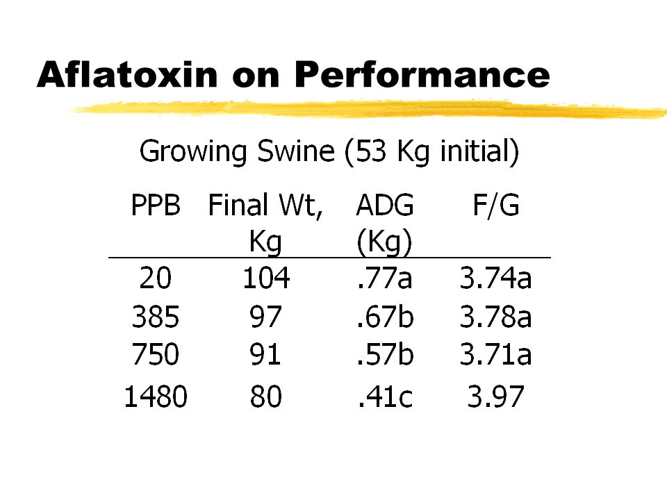 AFLATOXIN EFFECTS zInhibits protein synthesis zPoor gain zLiver damage zSusceptibility to Infection zResidues / carcinogenicity zReproduction in swine not primarily affected