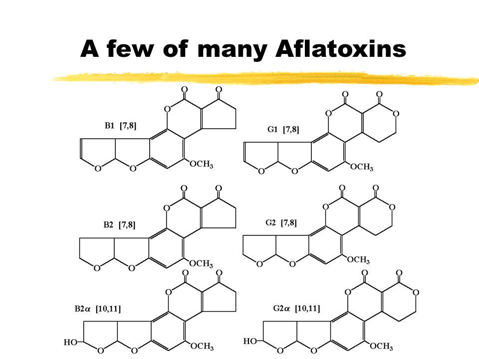 Aflatoxin (cont)