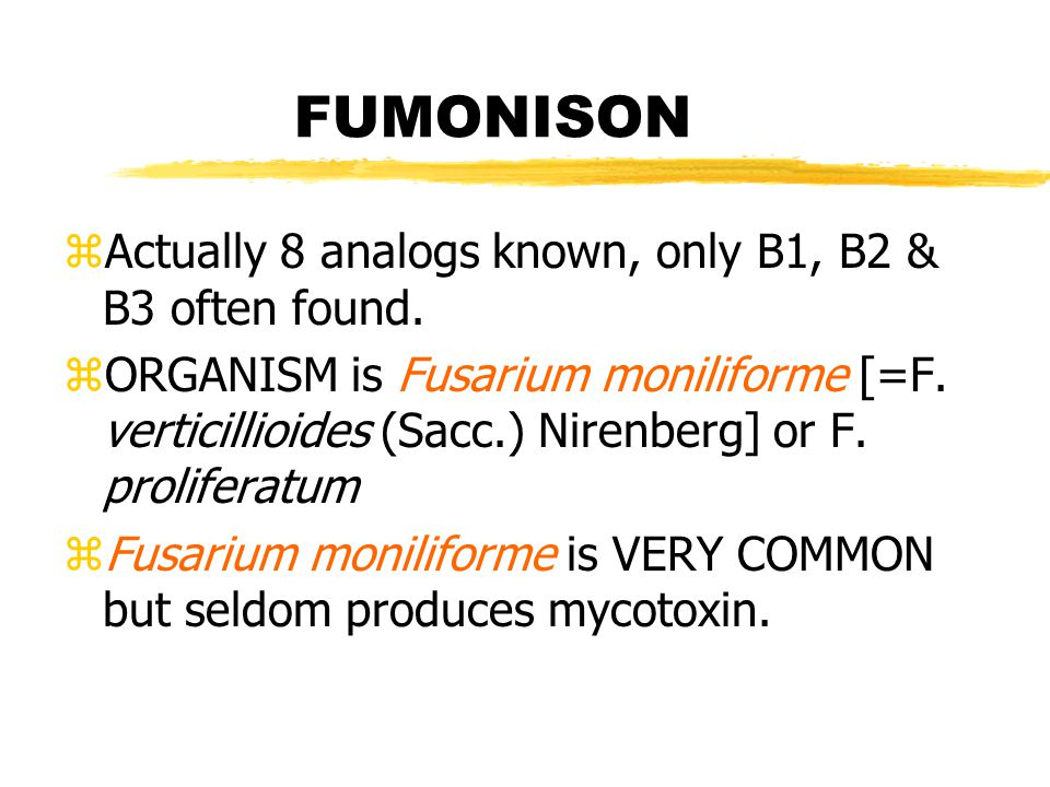 FUMONISON zDeadly to horses yequine leukoencephalomalacia zSwine - pulmonary oedema zRenal toxicity and hepatotoxic