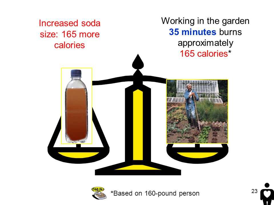 23 Working in the garden 35 minutes burns approximately 165 calories* *Based on 160-pound person Increased soda size: 165 more calories