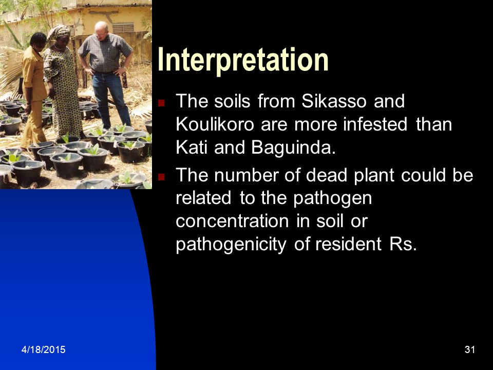 4/18/201531 Interpretation The soils from Sikasso and Koulikoro are more infested than Kati and Baguinda. The number of dead plant could be related to