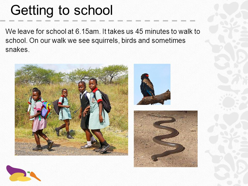 School assembly at 7am We stand in lines depending on our grades.