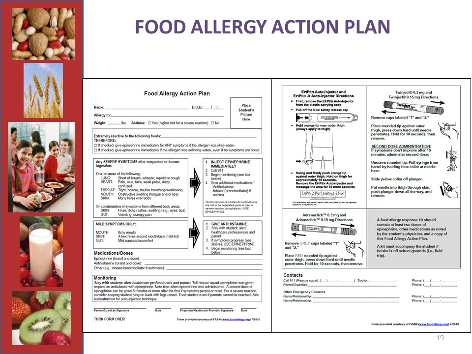 19 FOOD ALLERGY ACTION PLAN